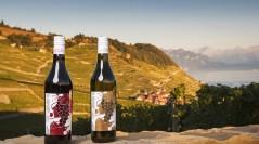 Badoux Vins – All Wine Stories